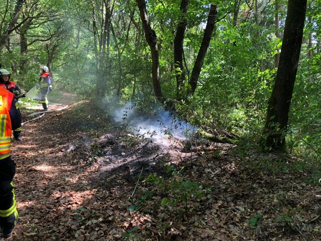 Waldbrand im Bereich Wechselberg